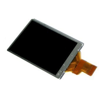 Ricoh GX200 LCD Display