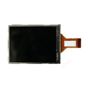 Ricoh R6 LCD Display