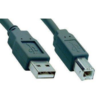 V7 USB 2.0 A / B Kaapeli 1
